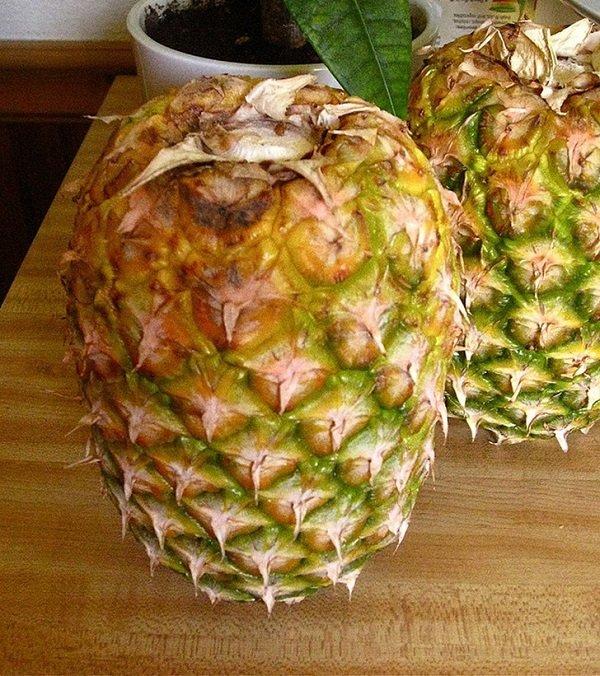 хранение ананаса