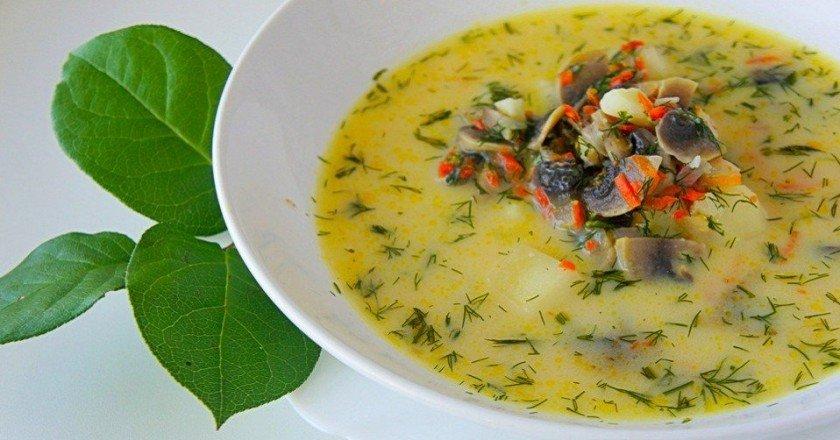 сырный суп с грибами фото рецепт