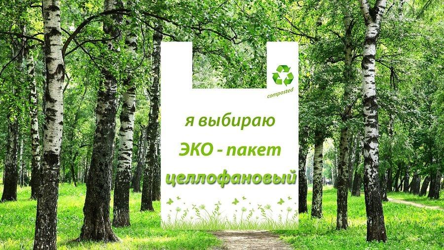 экологические пакеты