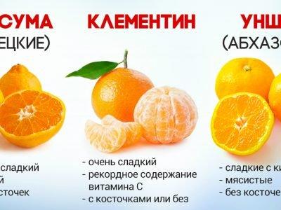 Блюда из мандаринов