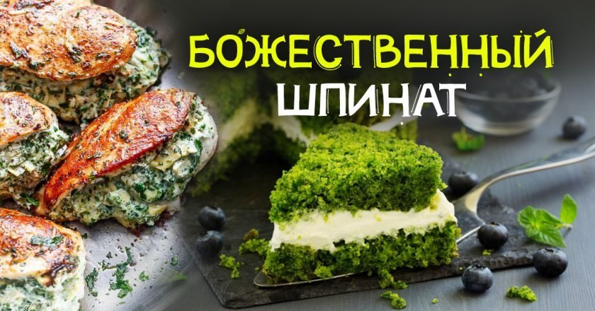 рецепты блюд со шпинатом