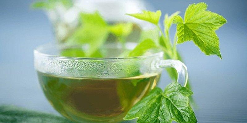 смородиновый чай<