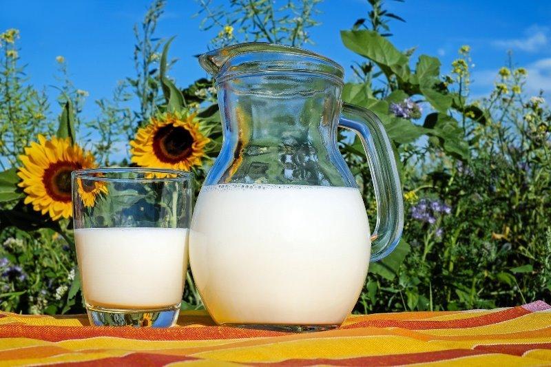 лактоза в козьем и коровьем молоке