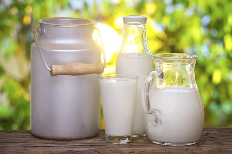жирность козьего и коровьего молока