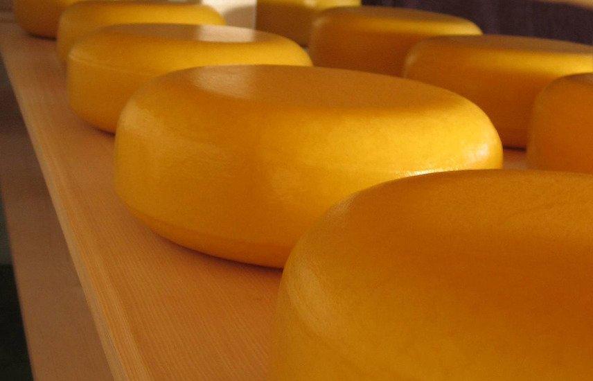 когда лучше есть сыр