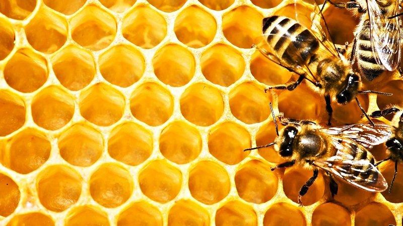 мёд вместо сладостей