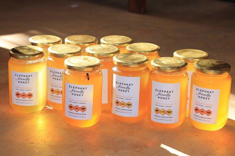 мёд для кишечника