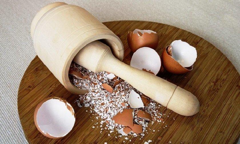 почему нельзя высыпать яичную скорлупу в раковину