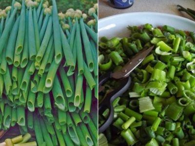Что приготовить из луковых стрелок: 5 простых блюд