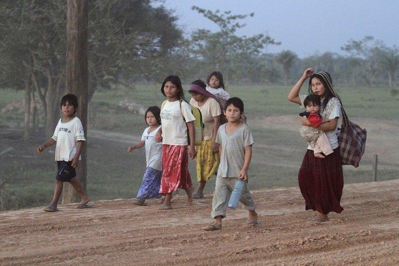 амазонское племя цимане