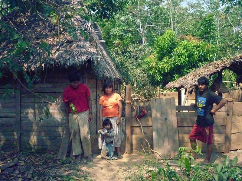 хижины племени цимане