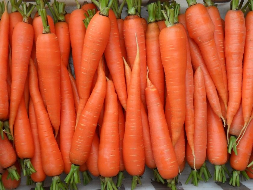 томаты и морковь