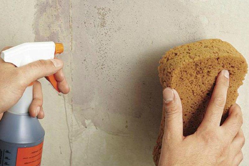 как использовать кухонные губки