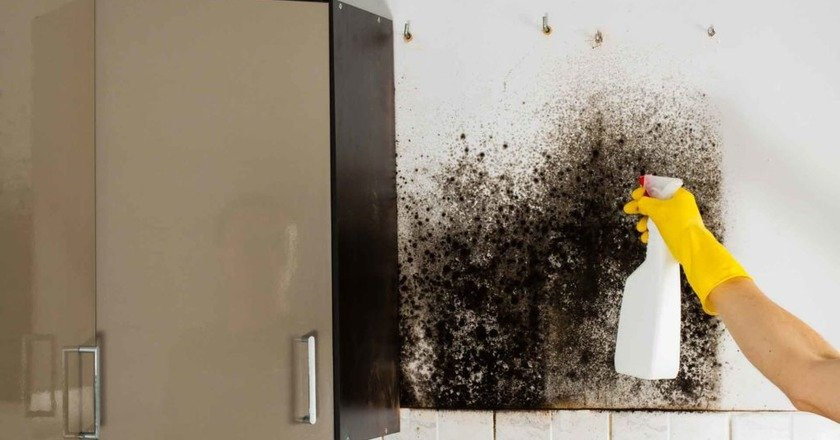 Przyczyny pojawienia się grzyba [19459013</p> <p> Ale nie rozpaczaj, nawet nie próbując swojej siły. Jeśli grzyb pojawił się tylko w kilku miejscach i nie ma go zbyt dużo, można zaatakować obszary dotknięte ludowymi środkami, które są zawsze pod ręką: ocet stołowy, wybielacz, etyl lub amoniak, roztwór manganu, nadtlenek wodoru, boraks lub napój gazowany. </p> <p> <img src=