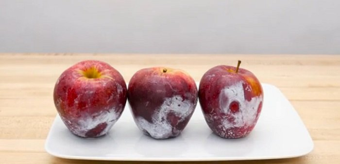 яблоки с воском