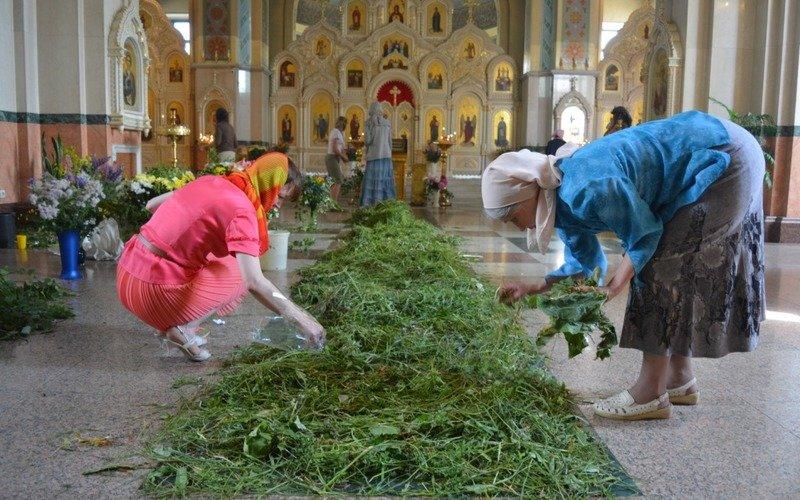 священные травы