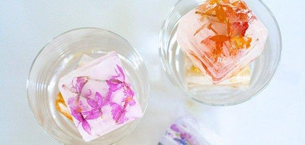 замороженные цветы