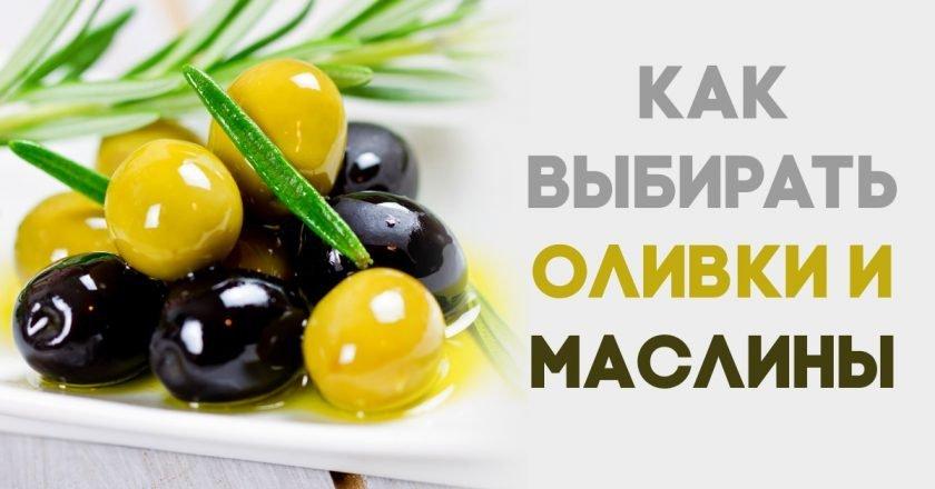 Оливки при похудении: можно ли их есть, разрешены ли маслины | xn.