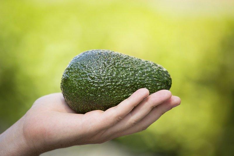 авокадо в руке