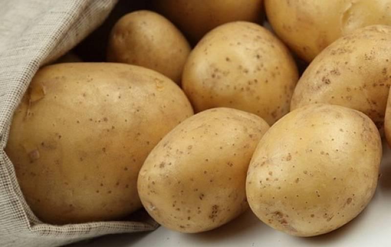 картофель фотографии