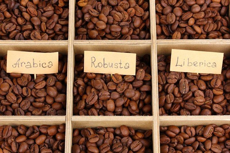 ziarna kawy