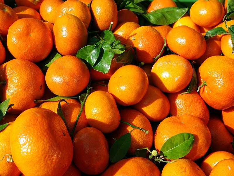 мандарины из китая фото