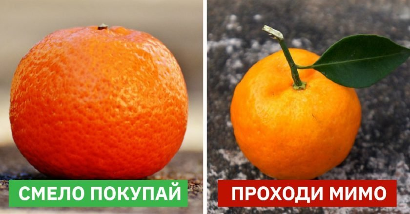 как выбрать мандарины