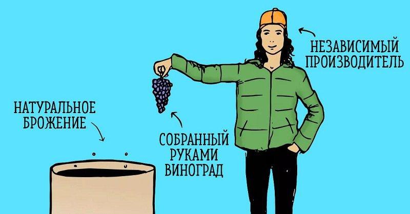 натуральные вина