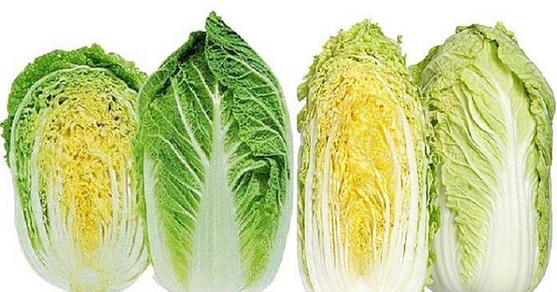 как выбрать пекинскую капусту