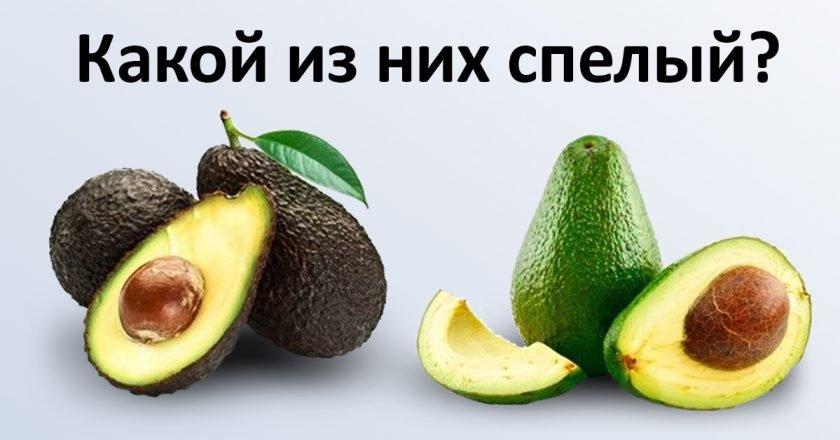 как выбирать экзотические фрукты