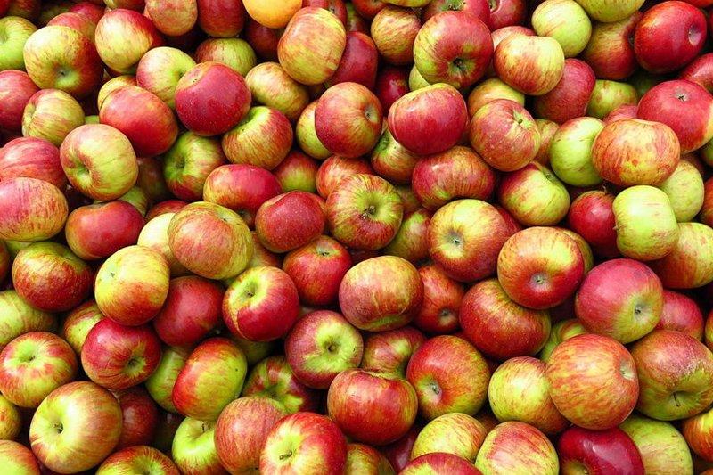 зачем замораживать яблоки