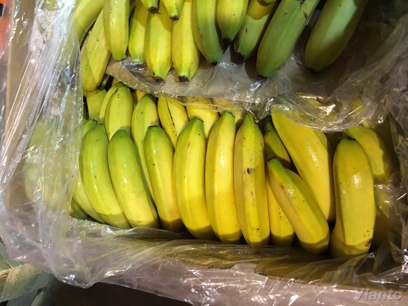 польза переспелых бананов