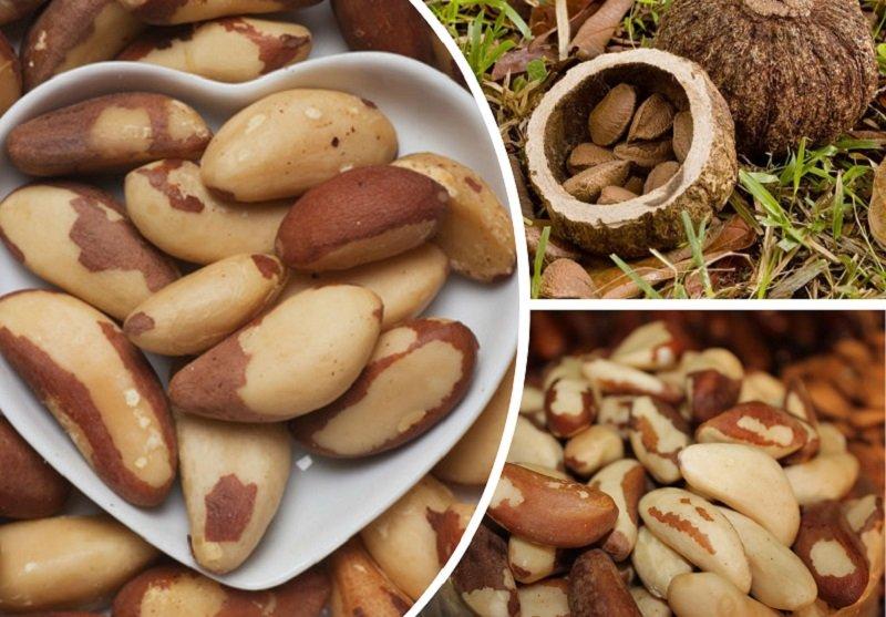 лечение орехами, бразильский орех