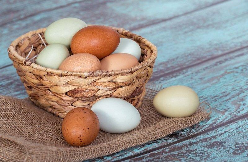 о пользе яиц