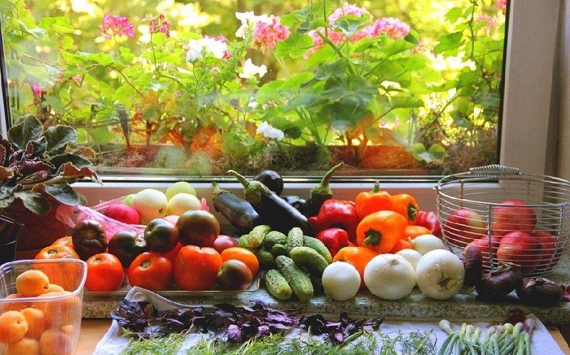 фрукты и овощи в августе