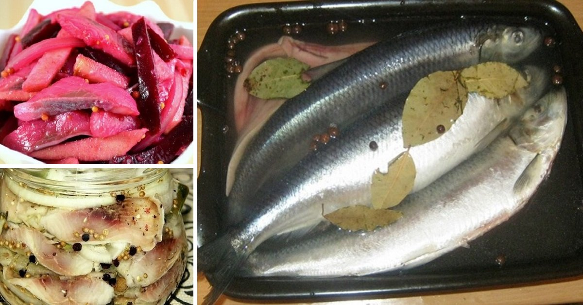 Мариновать рыбу в домашних условиях