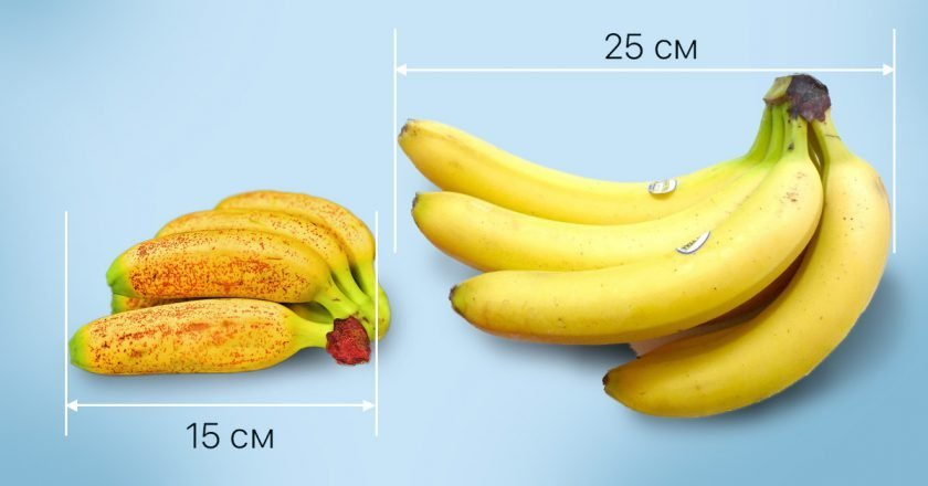 Секрет мини-бананов