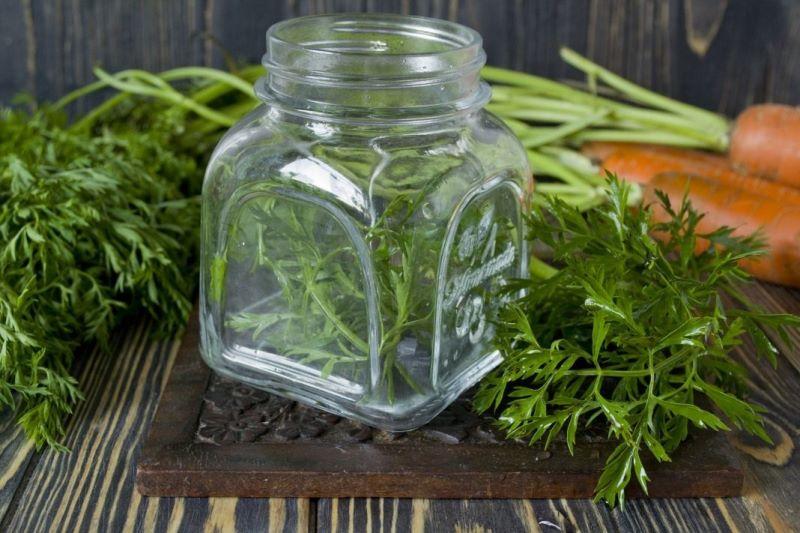 морковная ботва и ее свойства