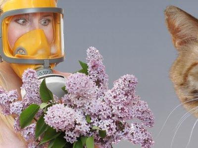 Натуральные средства от аллергии