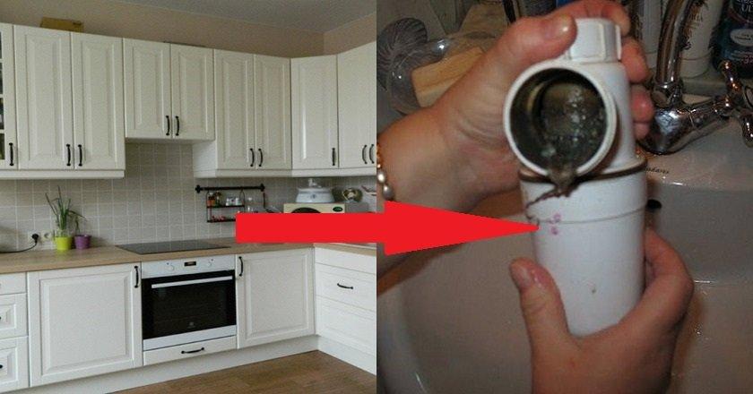 избавиться от неприятного запаха на кухне