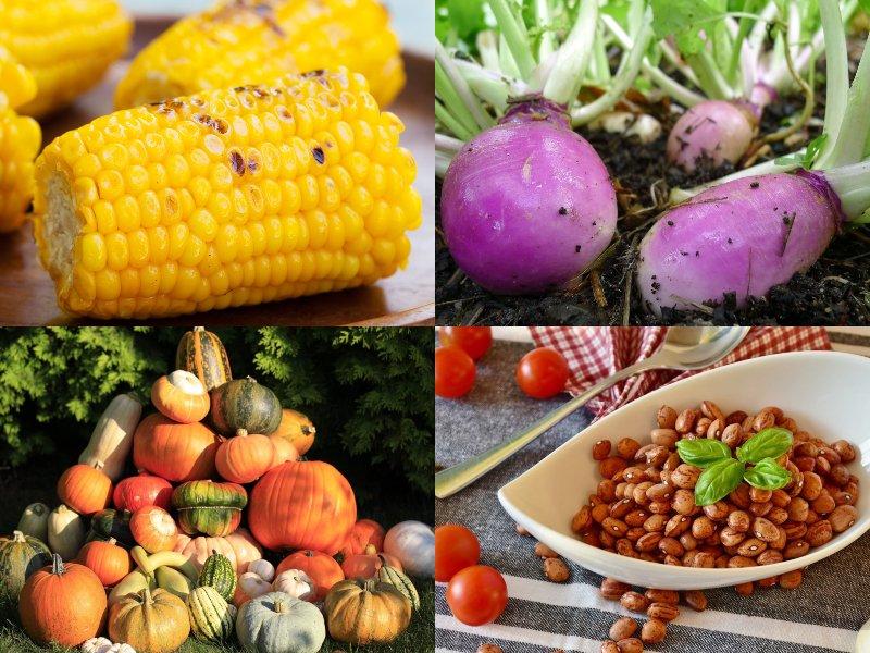 овощи для похудения живота