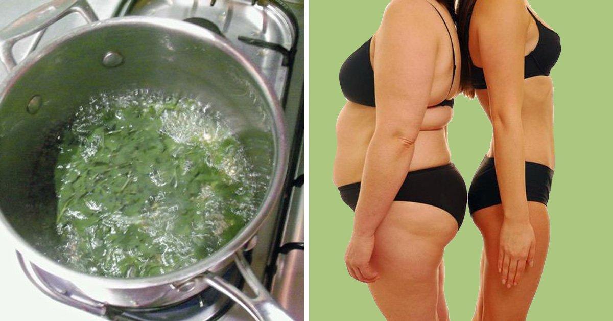 народные методы для эффективного похудения