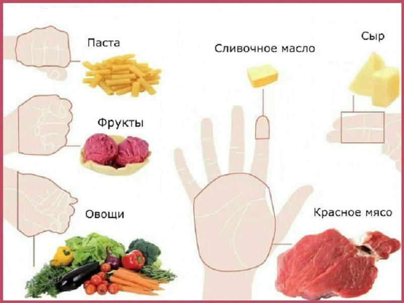 диета по ладони