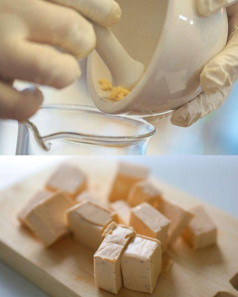 закуски из плавленого сыра в пластинах