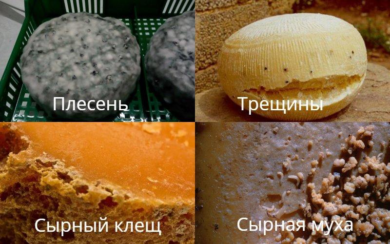 закуска к пиву из плавленого сыра