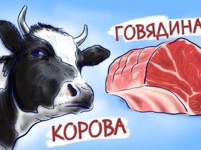 Почему говядина так называется