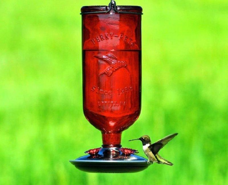 кормушка для птиц из бутылок