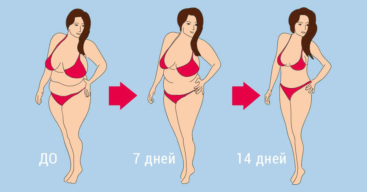 похудеть на 10 кг за 6 месяцев