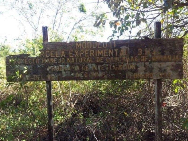 тропический парк в гуанакасте