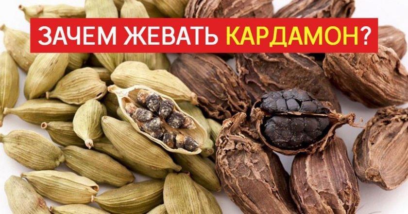 Польза кардамона